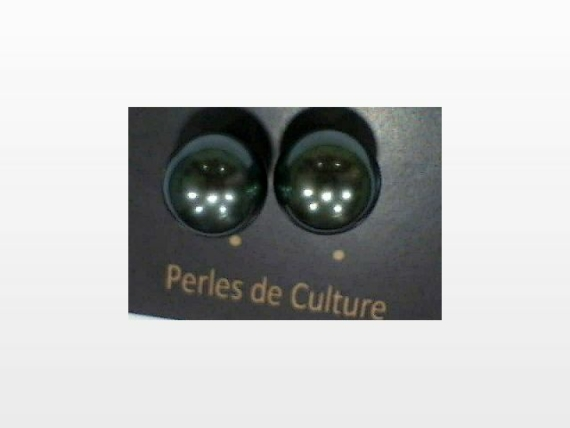 Puces perles