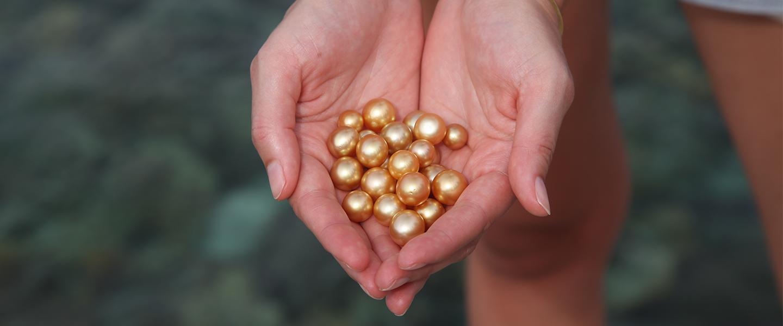 L'univers de la perle